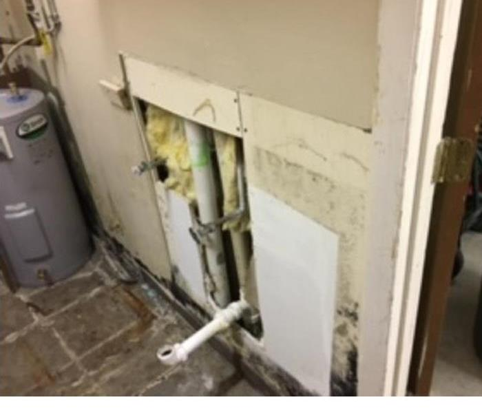 SERVPRO of Boone County Performs Mold Remediation for Florence, Kentucky Business
