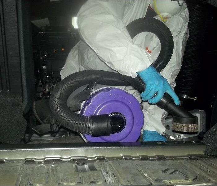 Mold Remediation in Car