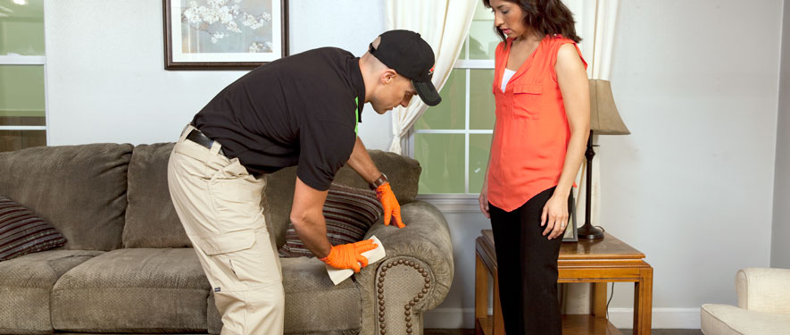 Florence, KY carpet upholstery cleaning